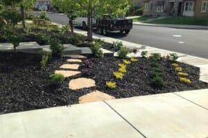 Mulched Landscape Design