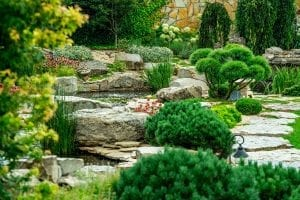 7 Elements to Include in Your Backyard Landscape Design