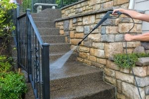 Landscaping Tips How to Keep Your Stone Walkways Free from Moss and Algae