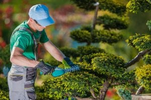Do Landscaping Contractors Near Me Need a License1